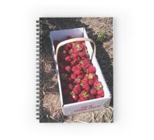 Box of Strawberries Spiral Notebook