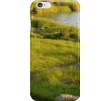 Walk into a Natural Wonderland iPhone Case/Skin