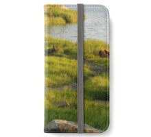 Walk into a Natural Wonderland iPhone Wallet/Case/Skin