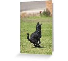 Keeping the Eye on the Ball Greeting Card