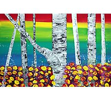 Rainbow Forest Photographic Print