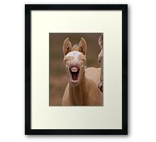 Baby Teeth Framed Print