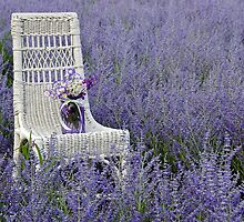 Russian Sage by Maria Dryfhout