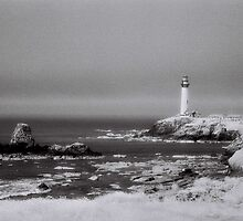 Lighthouse by Andrew Felton