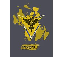 Pokemon Instinct Photographic Print