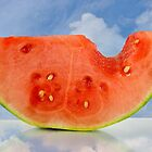 Summer Watermelon by Maria Dryfhout