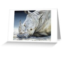 'Africa Dozing – White Rhino' Greeting Card