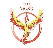 Valor Pokemon Photographic Print