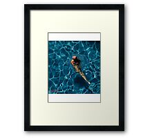 Classified - pool at beverly Framed Print