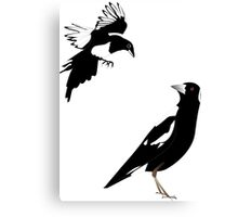 magpies meeting Canvas Print
