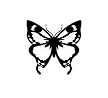 0743 Black and White Butterfly by DayColors