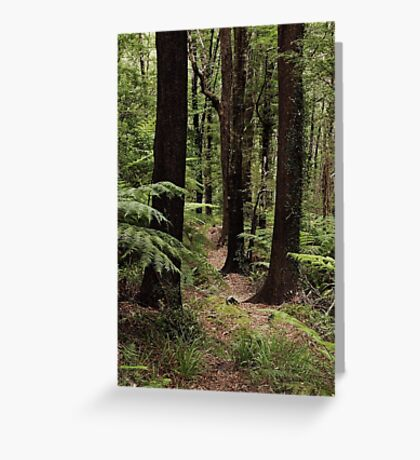 A peaceful path Greeting Card