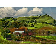 Napa Valley February Photographic Print
