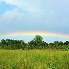 Eastern Shore Rainbow by Lexi