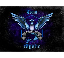 Mystic Team Blue Pokeball Photographic Print
