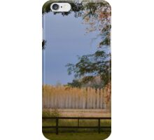 Wall of trees iPhone Case/Skin