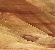 Painted Hills - Up Close And Personal - 1 © by © Hany G. Jadaa © Prince John Photography
