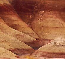 Painted Hills - Up Close And Personal - 2 © by © Hany G. Jadaa © Prince John Photography