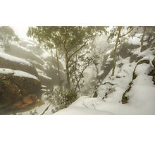 Trees and cliffs in mist Photographic Print