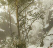 Trees and cliffs in mist Sticker