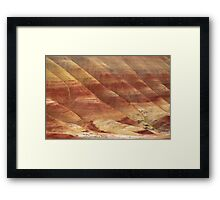 Painted Hills - Up Close And Personal - 3 © Framed Print