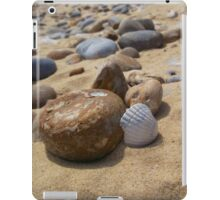 Pebbles and Shell iPad Case/Skin