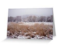Winter Along the Han River, South Korea Greeting Card