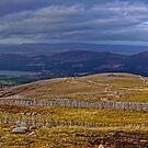 From Cairn Gorm Mountain in Autumn:  a panorama by Stephen Frost