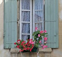 Window In The Shade by phil decocco