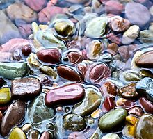 Stones of Lake Macdonald - Glacier National Park by Lexi