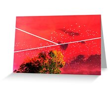 court sky Greeting Card