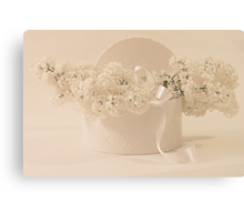 Lilac Purity In A Box Canvas Print