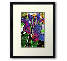 Passionate Moods  Framed Print