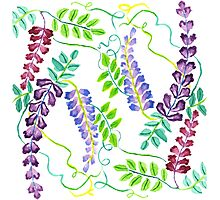 Hand-Painted Watercolor Japanese Wisteria Flowers Photographic Print