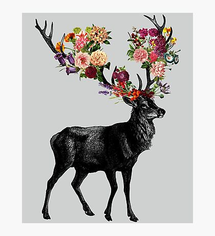 Spring Itself Deer Floral Photographic Print