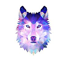 Geometric Galaxy Wolf Photographic Print