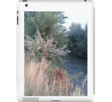 Fabulous times----Memories forever. iPad Case/Skin