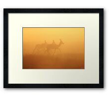 Springbok - African Wildlife Background - Majestic Gold Framed Print