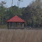 Southern Marsh Boat Dock by DAngelo982