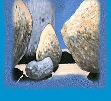 BIG sexy Boulders by James Lewis Hamilton