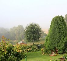 A misty summer's morning by missmoneypenny