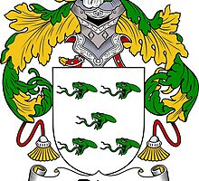 Rios Coat of Arms/Family Crest by William Martin