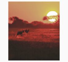 Springbok - African Wildlife Background - Magnificent Sun T-Shirt