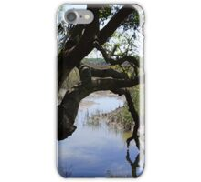 Old Tree Reaching Over To Taste The Water iPhone Case/Skin