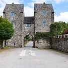 Gatehouse to Lismore Castle  by Declan Carr