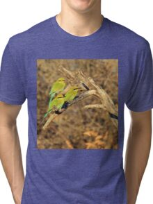 Bee-eater - African Wild Birds - Colorful Friends Tri-blend T-Shirt