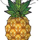 Pineapple Kush Marijauna Strain Art by kushcoast