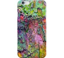 All the Colours of Lichen iPhone Case/Skin