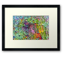 All the Colours of Lichen Framed Print