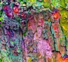 All the Colours of Lichen Sticker